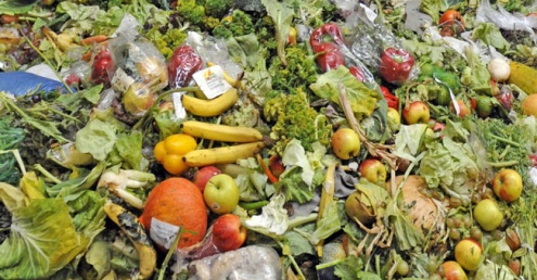 Force retailers to publish food waste figures, say MPs