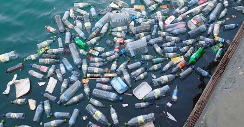 Plastic bottles floating in a river