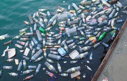 Plastic bottles floating in the ocean