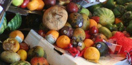 MEPs urged to halve food waste with crucial vote