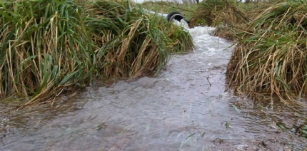 SUEZ fined £500k after sewage fungus outbreak from landfill