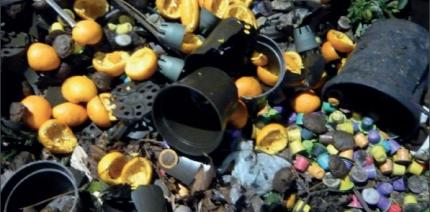 Plastic contamination in compost.