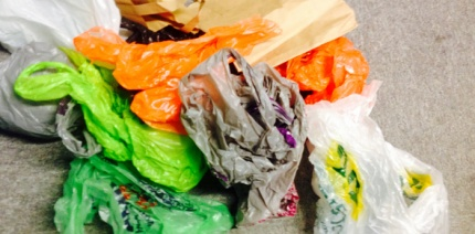 Lib Dems would introduce charges for all single-use bags