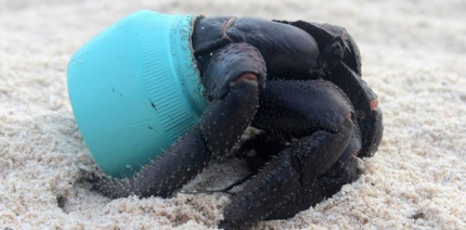 Ocean pollution targeted with $2 million plastic redesign prize