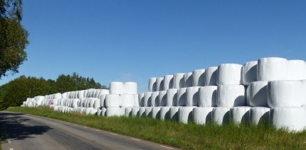 Silage wrap on bales of hay