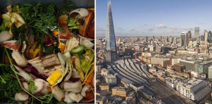 Nine London boroughs join TRiFOCAL food waste campaign
