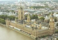 WWF-UK calls for urgent government reform