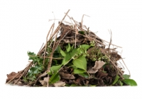Councillor loses Birmingham green waste case